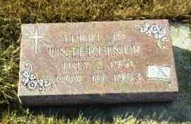 UNTEREINER, TERRI - Hutchinson County, South Dakota | TERRI UNTEREINER - South Dakota Gravestone Photos