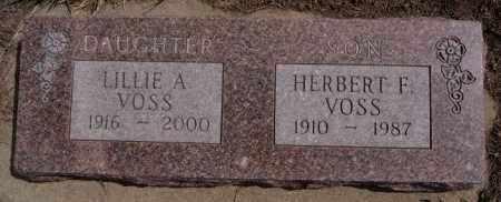 VOSS, HERBERT F - Hutchinson County, South Dakota | HERBERT F VOSS - South Dakota Gravestone Photos