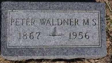 WALDNER, PETER - Hutchinson County, South Dakota | PETER WALDNER - South Dakota Gravestone Photos