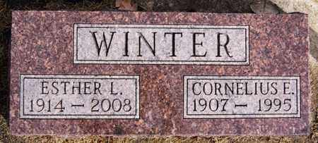 WINTER, CORNELIUS E - Hutchinson County, South Dakota | CORNELIUS E WINTER - South Dakota Gravestone Photos