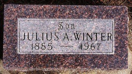 WINTER, JULIUS A - Hutchinson County, South Dakota | JULIUS A WINTER - South Dakota Gravestone Photos