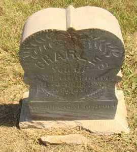 MARLENEE, CHARLES - Jerauld County, South Dakota | CHARLES MARLENEE - South Dakota Gravestone Photos