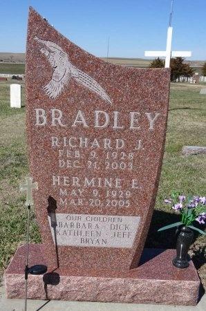 BRADLEY, HERMINE - Jones County, South Dakota | HERMINE BRADLEY - South Dakota Gravestone Photos