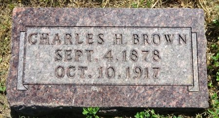 BROWN, CHARLES - Jones County, South Dakota | CHARLES BROWN - South Dakota Gravestone Photos