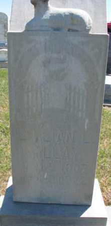 MILLAY, LILLIAN L. - Jones County, South Dakota | LILLIAN L. MILLAY - South Dakota Gravestone Photos