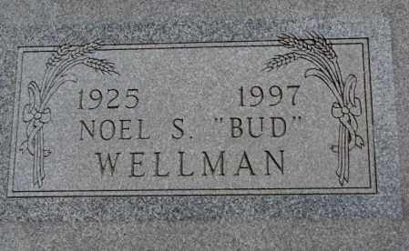 "WELLMAN, NOEL S. ""BUD"" - Jones County, South Dakota | NOEL S. ""BUD"" WELLMAN - South Dakota Gravestone Photos"