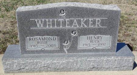 WHITEAKER, HENRY - Jones County, South Dakota | HENRY WHITEAKER - South Dakota Gravestone Photos