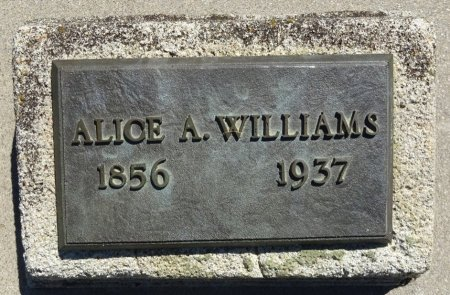 WILLIAMS, ALICE - Jones County, South Dakota | ALICE WILLIAMS - South Dakota Gravestone Photos