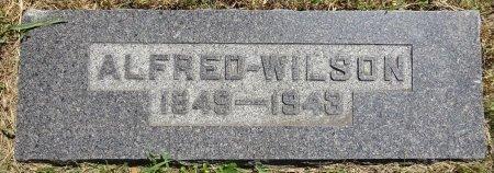 WILSON, ALFRED - Jones County, South Dakota | ALFRED WILSON - South Dakota Gravestone Photos