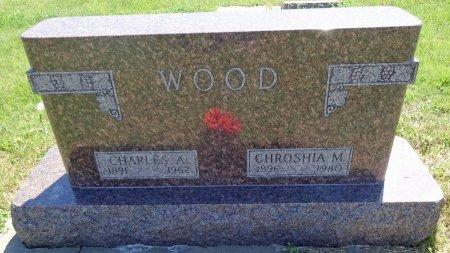 WOOD, CHROSHIA - Jones County, South Dakota   CHROSHIA WOOD - South Dakota Gravestone Photos