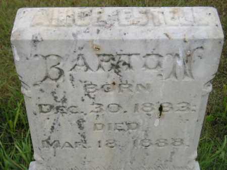 BARTON, ALICE ESTELL - Kingsbury County, South Dakota | ALICE ESTELL BARTON - South Dakota Gravestone Photos