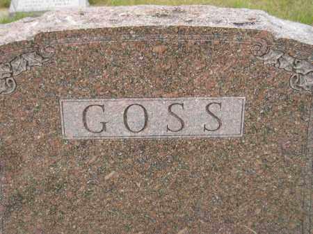 GOSS, FAMILY STONE - Kingsbury County, South Dakota | FAMILY STONE GOSS - South Dakota Gravestone Photos