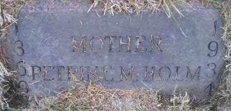 HOLM, PETRINE M - Kingsbury County, South Dakota | PETRINE M HOLM - South Dakota Gravestone Photos
