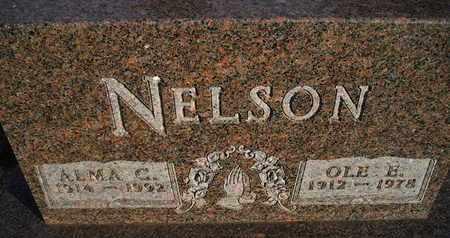 NELSON, ALMA C - Kingsbury County, South Dakota | ALMA C NELSON - South Dakota Gravestone Photos