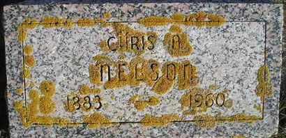 NELSON, CHRIS A - Kingsbury County, South Dakota | CHRIS A NELSON - South Dakota Gravestone Photos