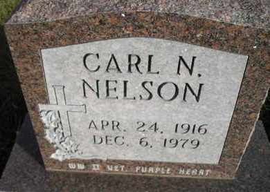 NELSON, CARL N - Kingsbury County, South Dakota | CARL N NELSON - South Dakota Gravestone Photos