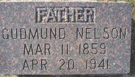 NELSON, GUDMUND - Kingsbury County, South Dakota | GUDMUND NELSON - South Dakota Gravestone Photos