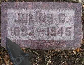 NELSON, JULIUS C - Kingsbury County, South Dakota   JULIUS C NELSON - South Dakota Gravestone Photos