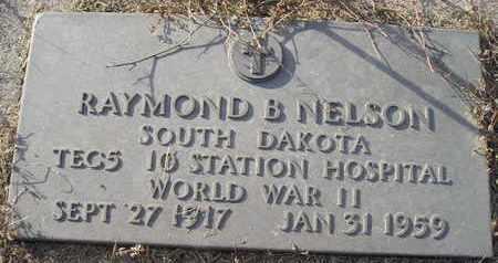 NELSON, RAYMOND B - Kingsbury County, South Dakota | RAYMOND B NELSON - South Dakota Gravestone Photos