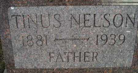 NELSON, TINUS - Kingsbury County, South Dakota | TINUS NELSON - South Dakota Gravestone Photos