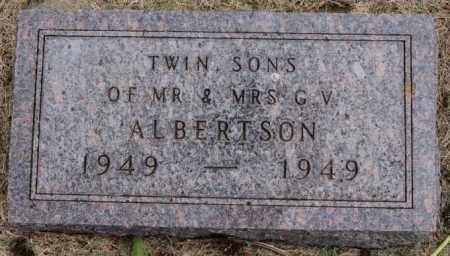 ALBERTSON, TWIN SONS - Lake County, South Dakota   TWIN SONS ALBERTSON - South Dakota Gravestone Photos