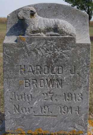 BROWN, HAROLD J - Lake County, South Dakota | HAROLD J BROWN - South Dakota Gravestone Photos