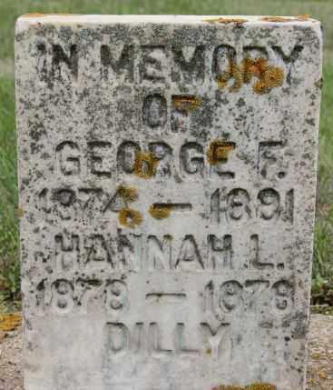 DILLY, GEORGE F - Lake County, South Dakota | GEORGE F DILLY - South Dakota Gravestone Photos