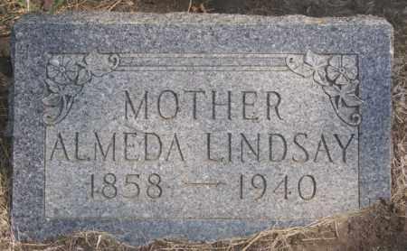 LINDSAY, ALMEDA - Lake County, South Dakota | ALMEDA LINDSAY - South Dakota Gravestone Photos