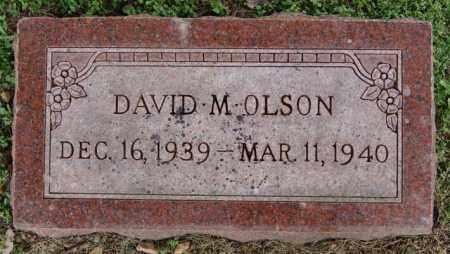 OLSON, DAVID M - Lake County, South Dakota | DAVID M OLSON - South Dakota Gravestone Photos