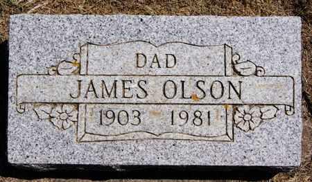 OLSON, JAMES - Lake County, South Dakota   JAMES OLSON - South Dakota Gravestone Photos