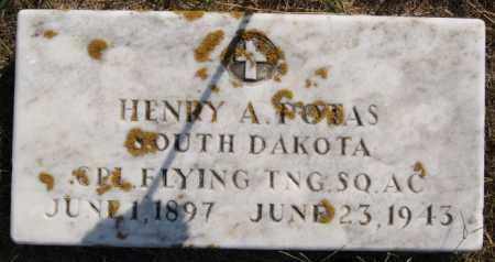 POTAS, HENRY A (MILITARY) - Lake County, South Dakota | HENRY A (MILITARY) POTAS - South Dakota Gravestone Photos