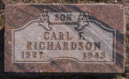 RICHARDSON, CARL F - Lake County, South Dakota | CARL F RICHARDSON - South Dakota Gravestone Photos