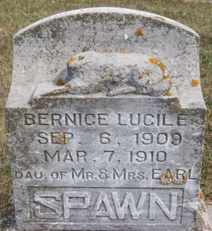 SPAWN, BERNICE LUCILE - Lake County, South Dakota | BERNICE LUCILE SPAWN - South Dakota Gravestone Photos