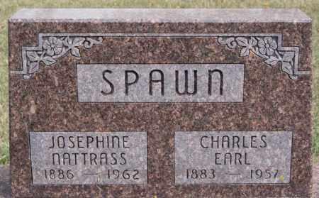 SPAWN, CHARLES EARL - Lake County, South Dakota | CHARLES EARL SPAWN - South Dakota Gravestone Photos