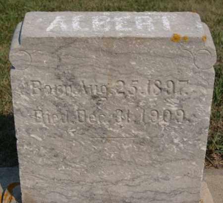 STALEY, ALBERT - Lake County, South Dakota   ALBERT STALEY - South Dakota Gravestone Photos