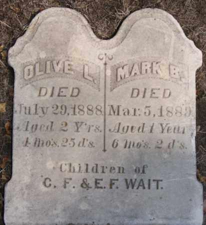 WAIT, OLIVE L - Lake County, South Dakota   OLIVE L WAIT - South Dakota Gravestone Photos