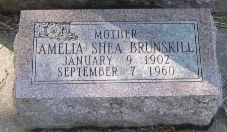 BRUNSKILL, AMELIA - Lawrence County, South Dakota | AMELIA BRUNSKILL - South Dakota Gravestone Photos