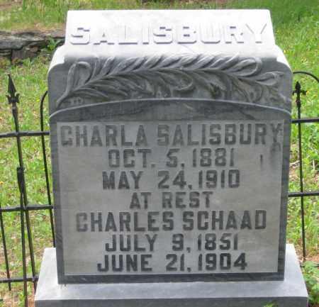 SALISBURY, CHARLA - Lawrence County, South Dakota   CHARLA SALISBURY - South Dakota Gravestone Photos