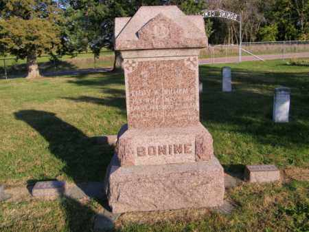 BONINE PLOT, WILLIAM S - Lincoln County, South Dakota | WILLIAM S BONINE PLOT - South Dakota Gravestone Photos