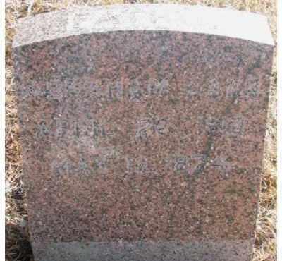 DANN, ABRAHAM - Lincoln County, South Dakota   ABRAHAM DANN - South Dakota Gravestone Photos