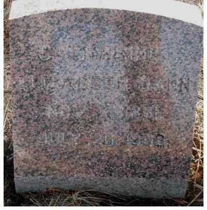 DANN, CATHARINE ELIZABETH - Lincoln County, South Dakota   CATHARINE ELIZABETH DANN - South Dakota Gravestone Photos