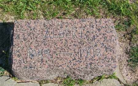ELIASON, ALBERT - Lincoln County, South Dakota | ALBERT ELIASON - South Dakota Gravestone Photos