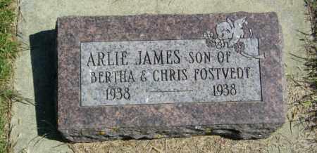 FOSTVEDT, ARLIE JAMES - Lincoln County, South Dakota   ARLIE JAMES FOSTVEDT - South Dakota Gravestone Photos
