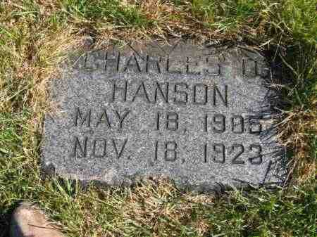 HANSON, CHARLES D - Lincoln County, South Dakota | CHARLES D HANSON - South Dakota Gravestone Photos