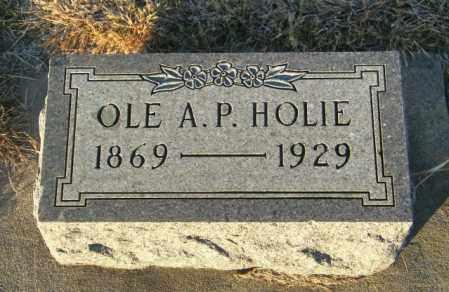 HOLIE, OLE A P - Lincoln County, South Dakota   OLE A P HOLIE - South Dakota Gravestone Photos