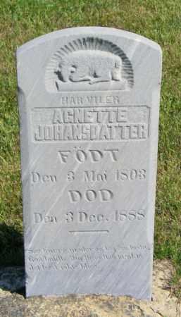 JOHANSEN, AGNETTE JOHANSDATTER - Lincoln County, South Dakota   AGNETTE JOHANSDATTER JOHANSEN - South Dakota Gravestone Photos