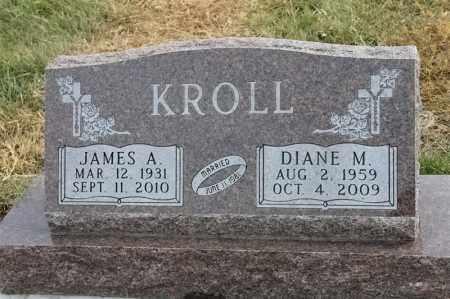 KROLL, DIANE M - Lincoln County, South Dakota | DIANE M KROLL - South Dakota Gravestone Photos