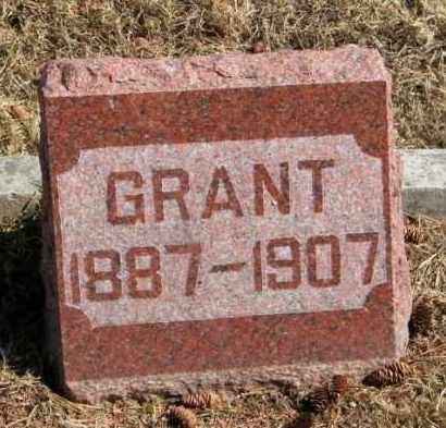 LARSEN, GRANT - Lincoln County, South Dakota | GRANT LARSEN - South Dakota Gravestone Photos
