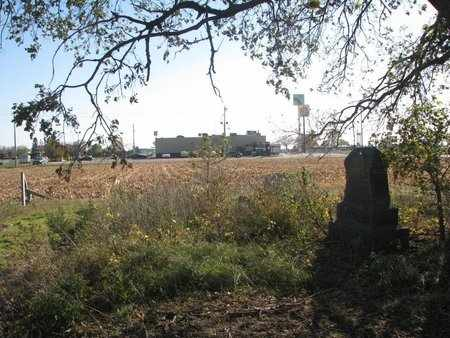 *LARSEN, VIEW FROM CEMETERY - Lincoln County, South Dakota | VIEW FROM CEMETERY *LARSEN - South Dakota Gravestone Photos