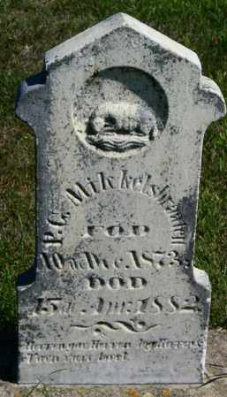 MIKKELSBRAATEN, P.C. - Lincoln County, South Dakota | P.C. MIKKELSBRAATEN - South Dakota Gravestone Photos